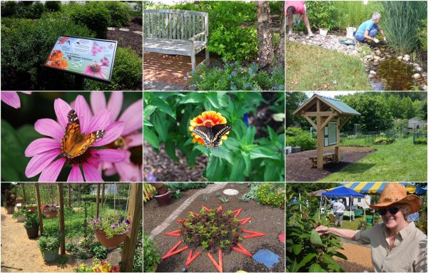 Collage of garden pictures